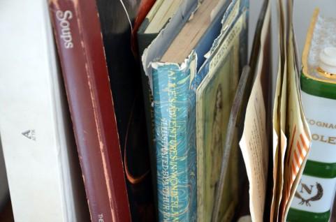 アイホンの読み上げ機能のおかげで読書できていますが、読む読書は最高。